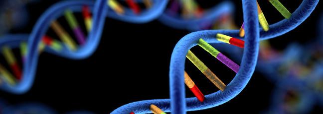 online genetics course